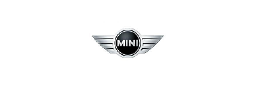 MINI (28)
